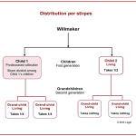 per stirpes, per stirpes distribution, meaning of per stirpes, meaning of per capita, estates, deceased estates, deceased estate distribution, estate distribution, meaning of per capita, per stirpes,