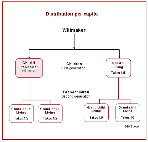 per capita distribution, deceased estate, intestacy,