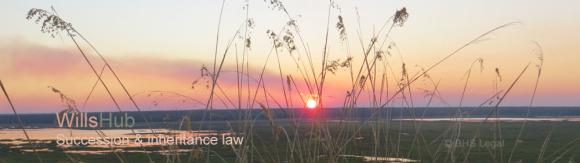 codicil to a will, amending a will, changing a will, making a codicil